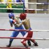 Tổng quan giải Vô địch Kickboxing quốc gia 2020